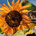 Sunflower, oil on canvas 14X36 SOLD